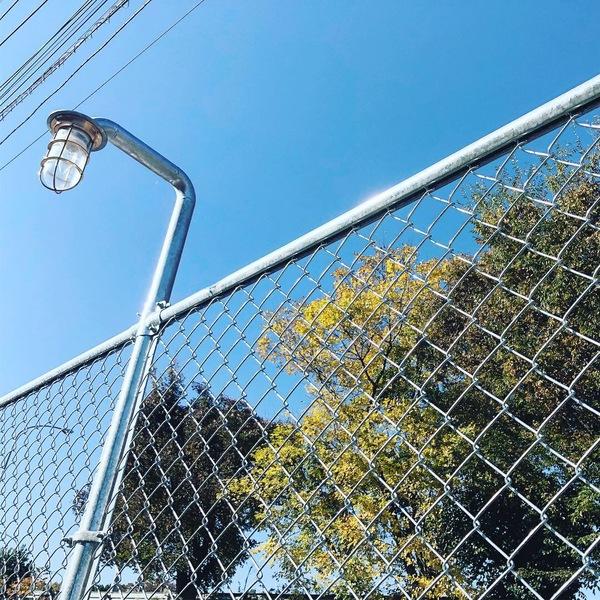 金網フェンスとライト